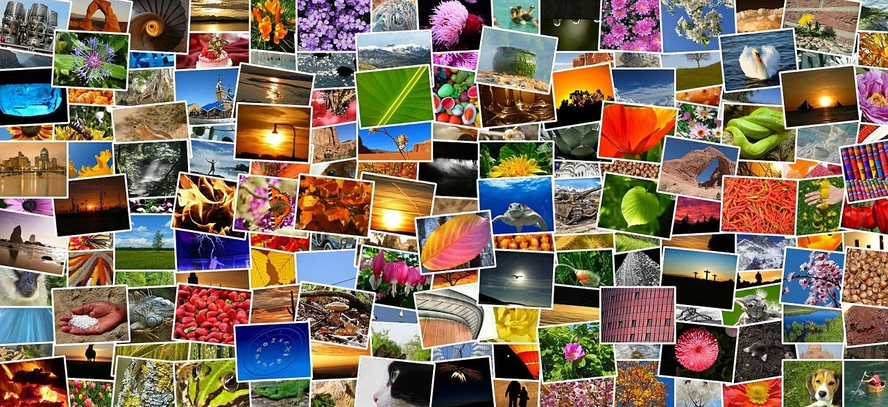 Creare un collage di foto migliori programmi gratis e - Collage de fotos para pared ...